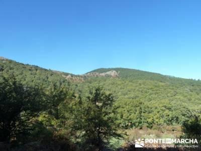 El Castañar de El Tiemblo , Un bosque mágico;grupo montaña madrid;asociaciones de senderismo en m